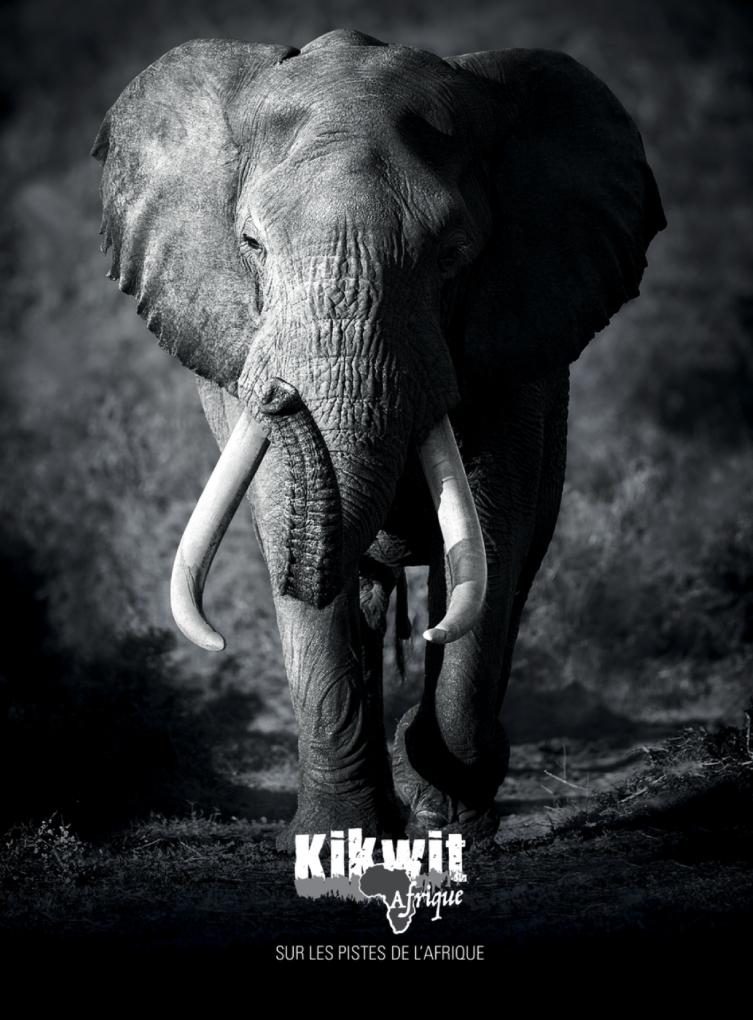 Kikwit Afrique