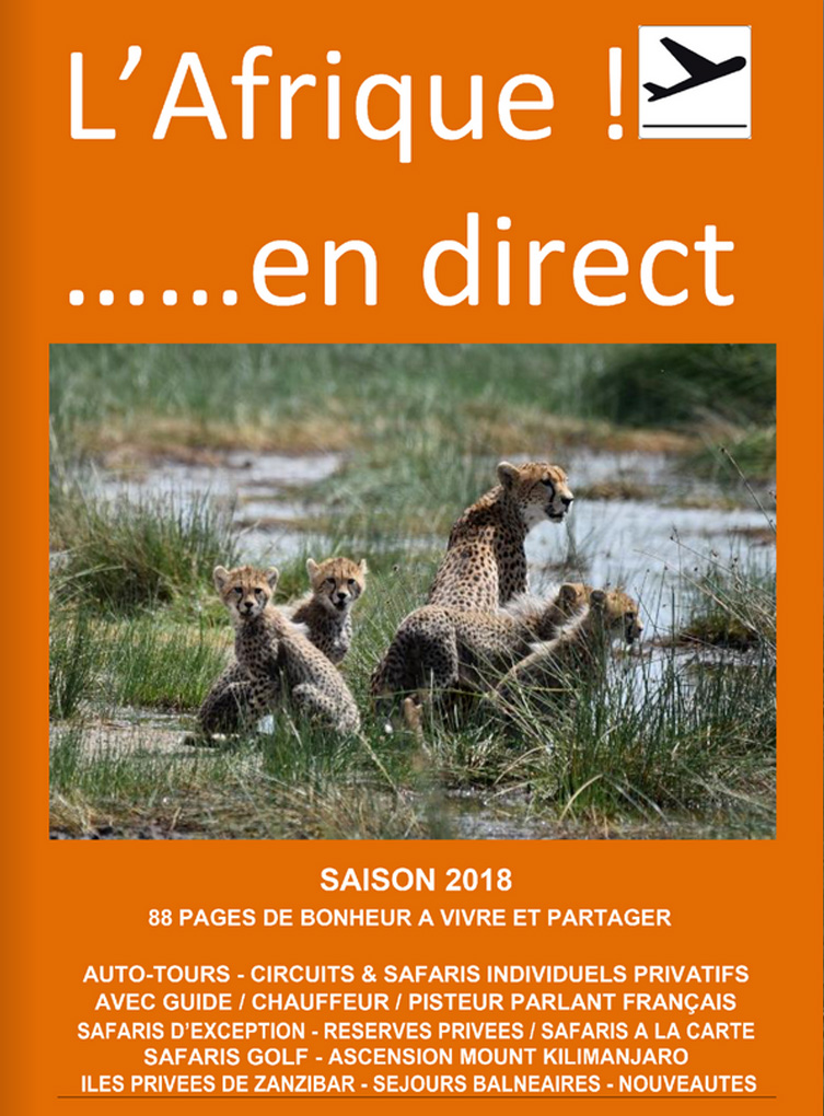 Catalogue Afrique en direct