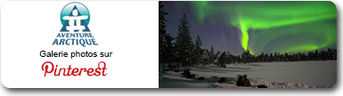 Aventure Arctique - Pinterest